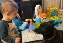 Мальчик разговаривает с собакой
