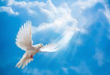Господь посылает Дух Святости