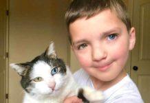 Хлопчик і кіт з різним кольором очей