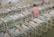 46 дитини, які народжені від сурогатних матерів