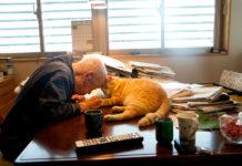 Кіт і дідусь