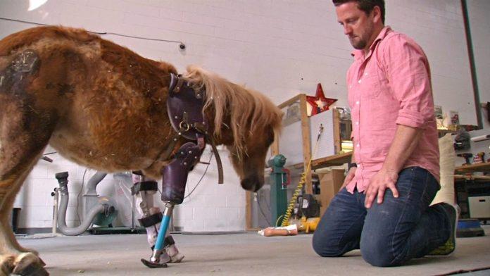 Чоловік виготовляє протези для тварин