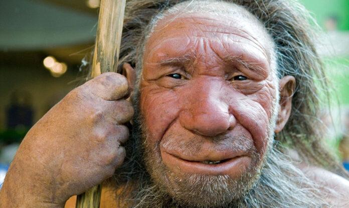 Неандертальці не були знищені зміною клімату