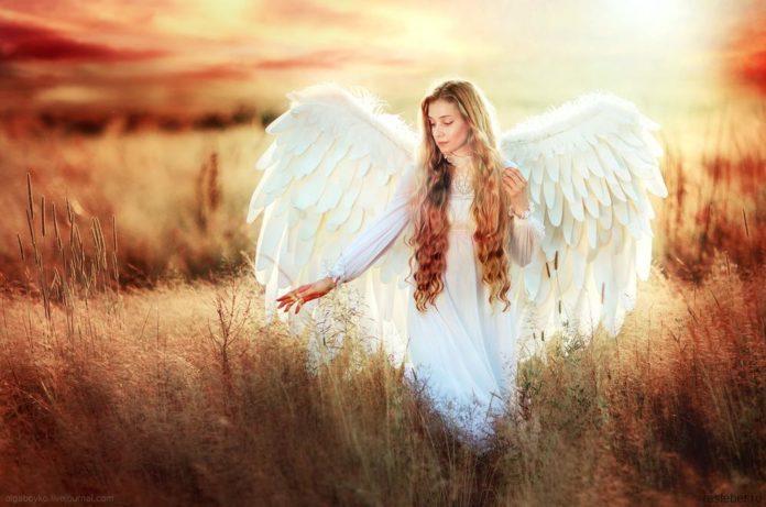 Твій ангел-хранитель
