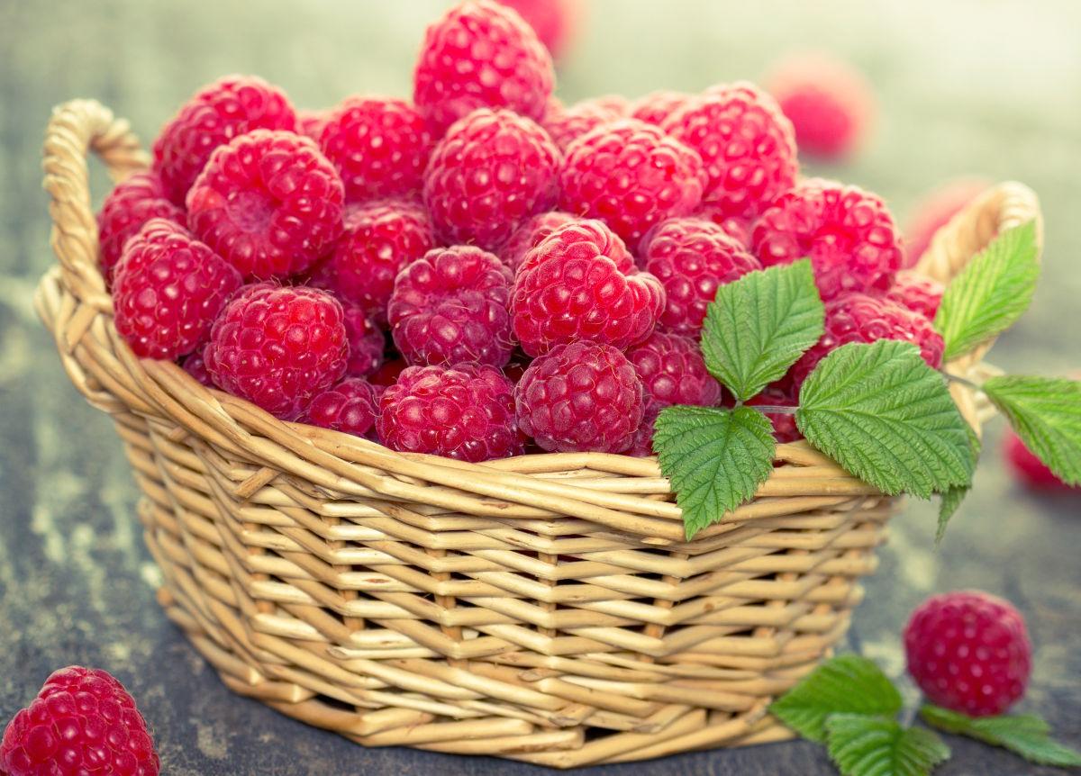 Малина – очень полезная ягода, которая не теряет свои свойства даже после термической обработки