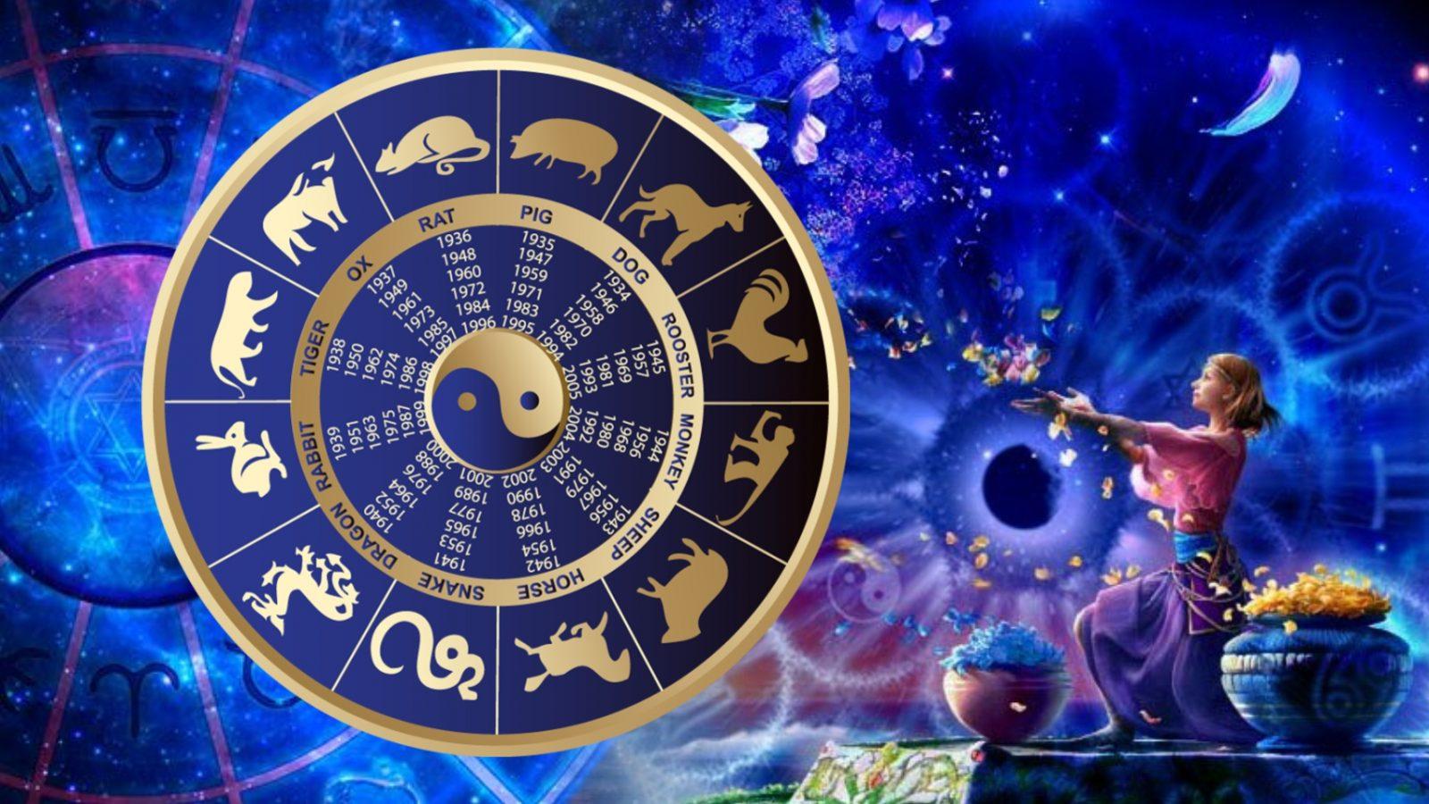 Создание гороскопа на сайте хартстоун сайт для создания карт