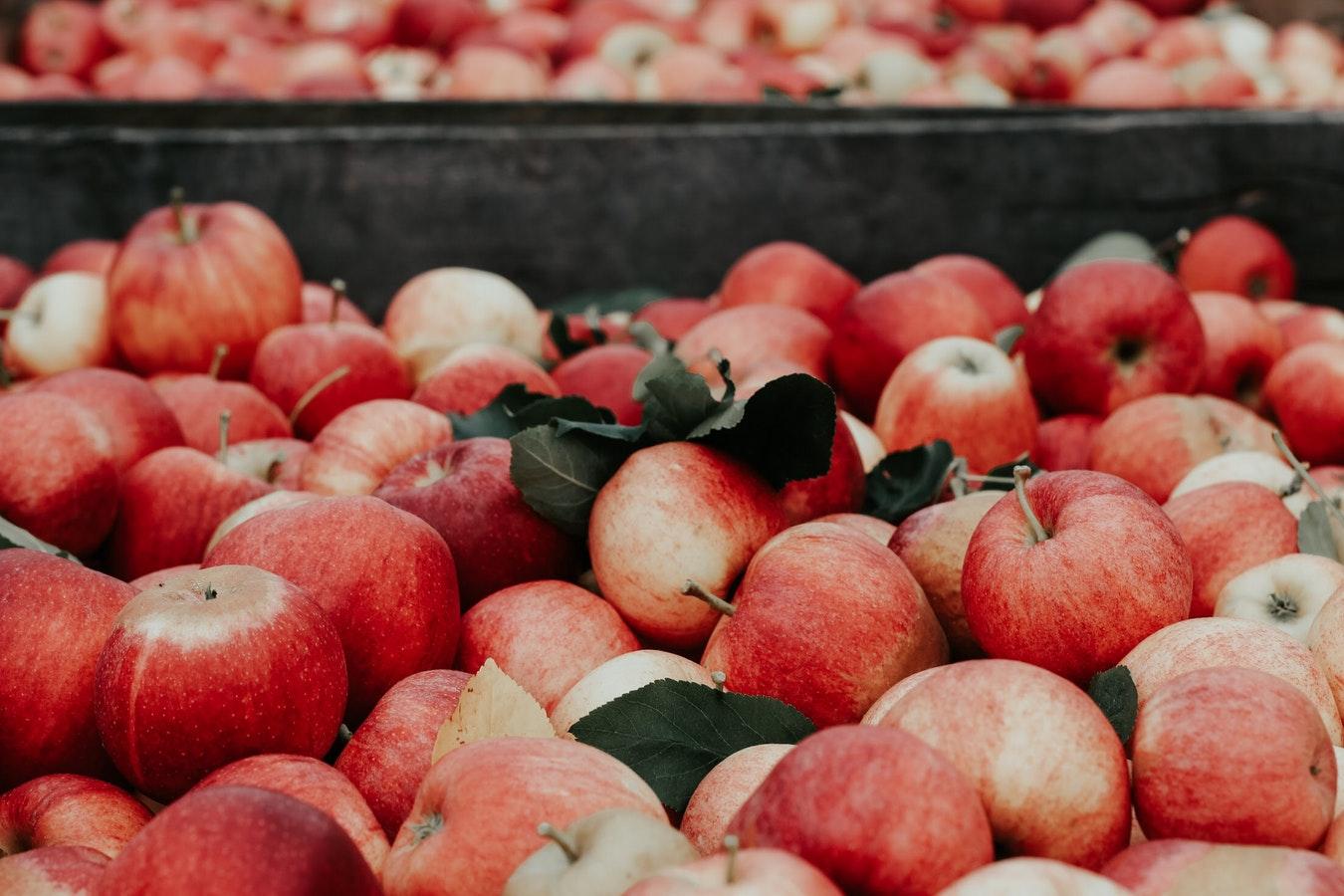 Для выпечки лучше всего подойдут кисло-сладкие сорта яблок