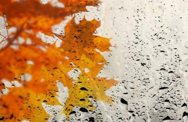 Погода на осінь 2020
