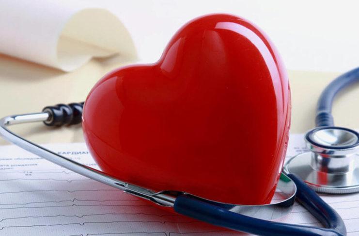 Создан клеточный атлас человеческого сердца