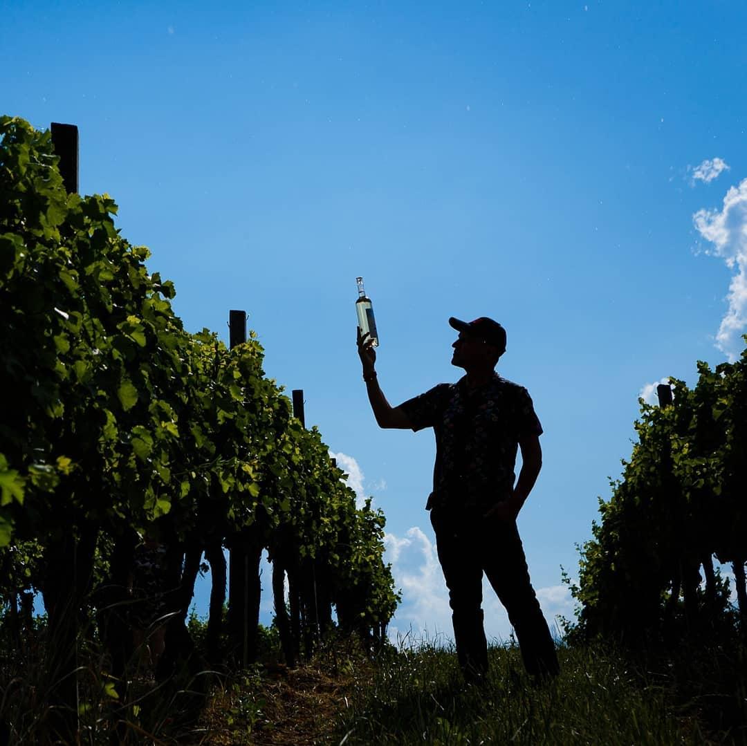 Олег Скрипка купил виноградники