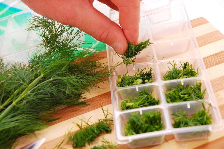 Заготовка зелени