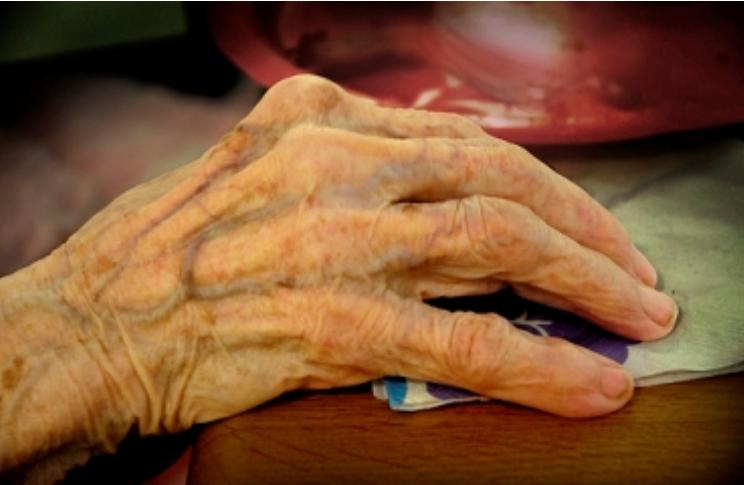 Это руки женщины возрастом 100 лет, котороая всю жизнь работала на виноградниках