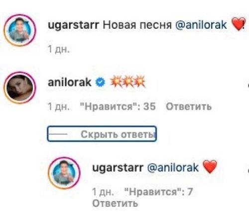 Ани Лорак оставила комментарий под кавером на свою песню