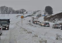 Перші снігопади в Україні