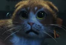 Наляканий кіт