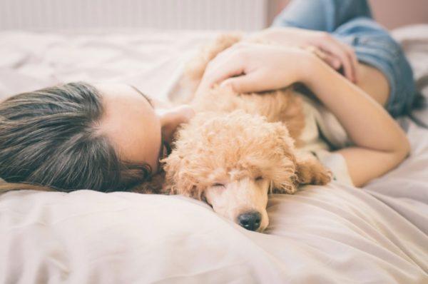 Сон з собаками корисний