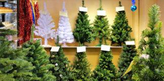 Инструкция по выбору елки на Новый год - несколько простых советов, которые помогут создать уют в доме