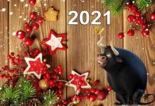Що надіти на Новий рік 2021, щоб сподобатися Білому Металевому Бикові?
