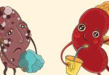 Камені в нирках, як запобігти