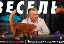 Доктор Комаровський відповідає на питання