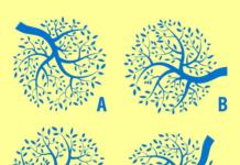Де 2 схожих дерева?