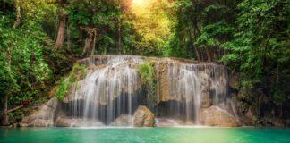 Джунглі Таїланду
