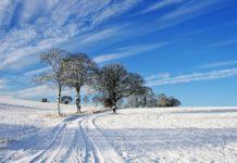 Січневі морози і новий циклон - Наталка Діденко дала прогноз