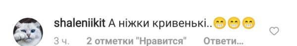 Комментарии под снимком Дорофеевой