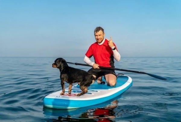 Собаки, які вирішили покататися по хвилях на дошці для серфінгу