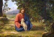 Притча про овцу