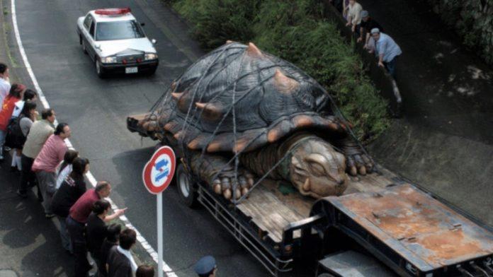 Найбільші тварини світу