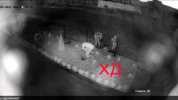 В Каменском на Днепропетровщине две женщины с ребенком обокрали церковь