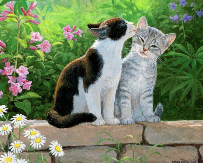 Кішки в саду
