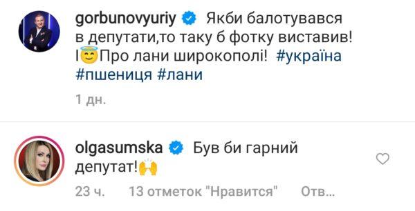 Ольга Сумская прокомментировала пост Горбунова