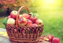 Яблочный спас 2021