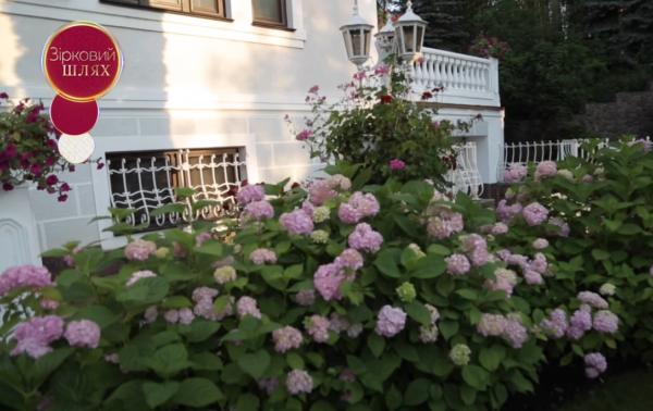 Как выглядит дом Зиброва