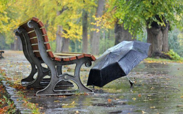 Дощова осінь