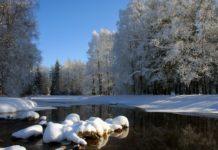 День Сергий Зимний